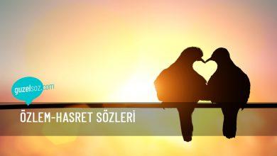 Photo of Özlem-Hasret Sözleri
