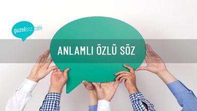 Photo of Anlamlı Özlü Söz