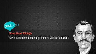 Photo of Ahmet Hikmet Müftüoğlu Sözleri