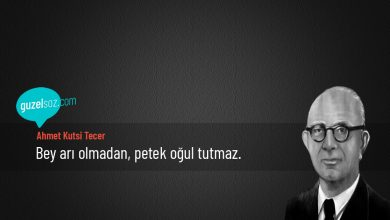 Photo of Ahmet Kutsi Tecer Sözleri