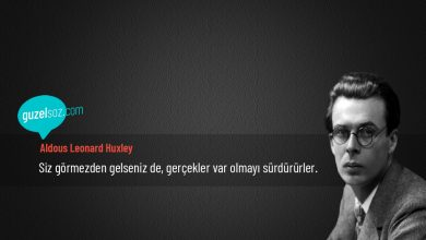 Photo of Aldous Leonard Huxley Sözleri