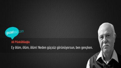 Photo of Ali Püsküllüoğlu Sözleri