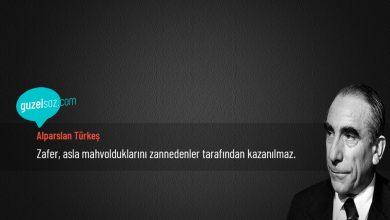 Photo of Alparslan Türkeş Sözleri