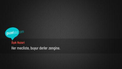 Photo of Âşık Huzuri Sözleri