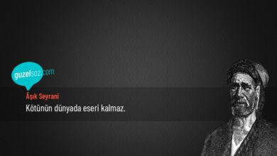 Photo of Âşık Seyrani Sözleri