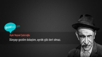 Photo of Âşık Veysel Şatıroğlu Sözleri
