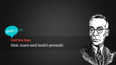 Photo of Cemil Sena Ongun Sözleri