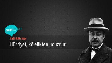 Photo of Falih Rıfkı Atay Sözleri