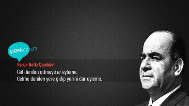 Photo of Faruk Nafiz Çamlıbel Sözleri