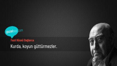 Photo of Fazıl Hüsnü Dağlarca Sözleri