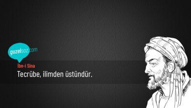 Photo of İbn-i Sina Sözleri