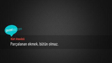 Photo of Kürt Atasözleri
