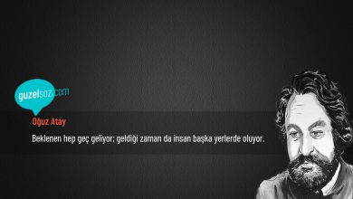 Photo of Oğuz Atay Sözleri