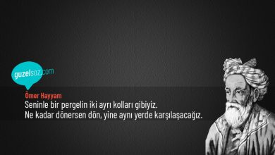 Photo of Ömer Hayyam Sözleri
