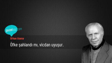 Photo of Orhan Asena Sözleri
