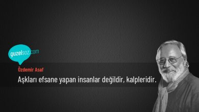 Photo of Özdemir İnce Sözleri