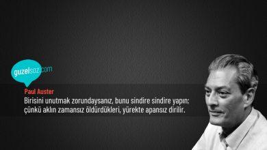 Photo of Paul Auster Sözleri
