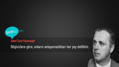 Photo of Sabri Esat Siyavuşgil Sözleri