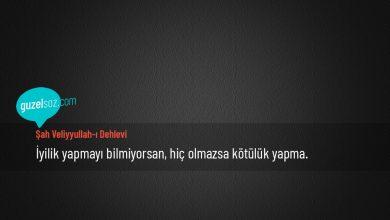 Photo of Şah Veliyyullah-I Dehlevi Sözleri