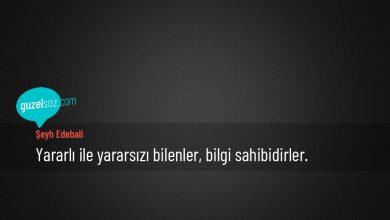 Photo of Şeyh Edebali Sözleri